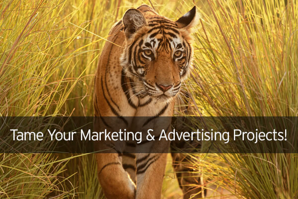 Tame Your Marketing & Advertising Projects